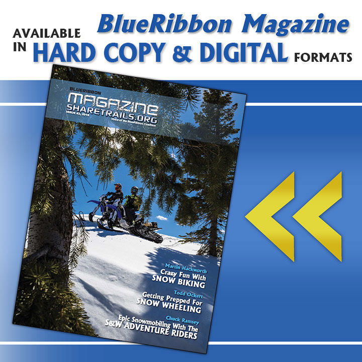 BlueRibbon Magazine, Issue #003