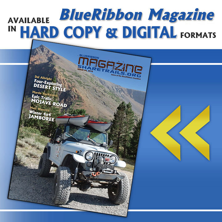 BlueRibbon Magazine, Issue #004