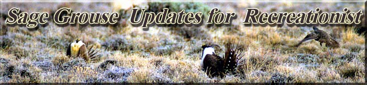 greater-sage-grouse-banner-1a.jpg
