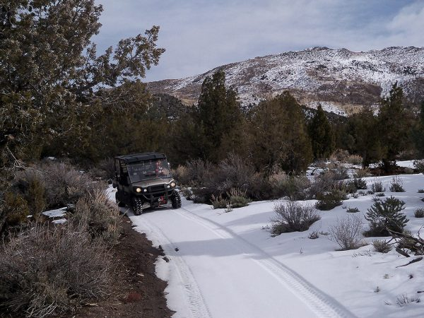 Sharetrails/BRC Questions OHV Restrictions In Bi-State Sage Grouse Decision