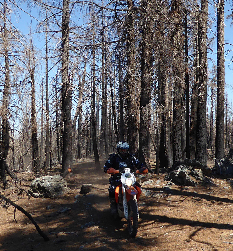 Northcoast OHV Clubs and Forest Service Commit to Trail Partnership
