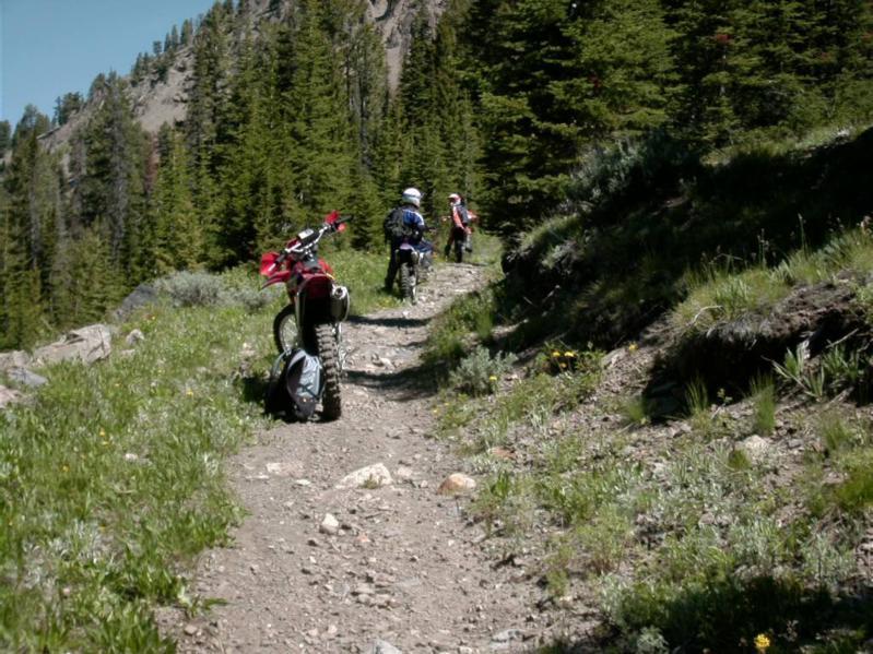 bwc-trail-2_799x599