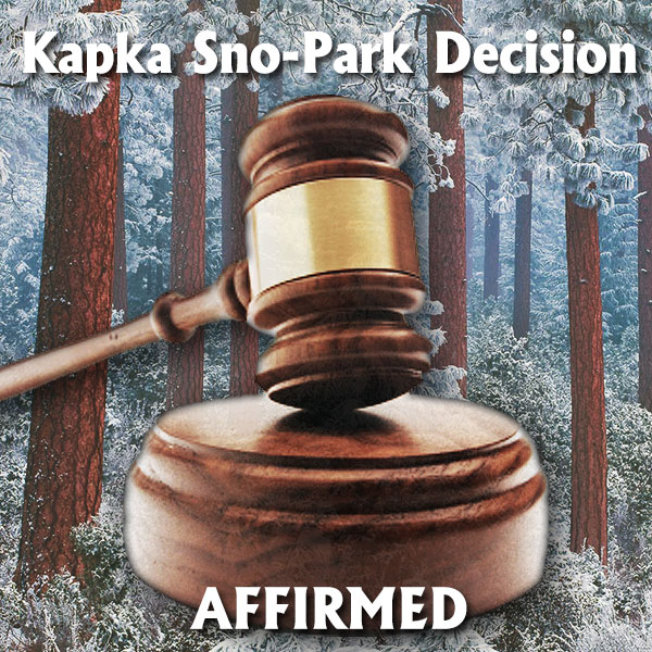 KapkaDecision_web